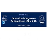 International Congress on Cartilage Repair of the Ankle